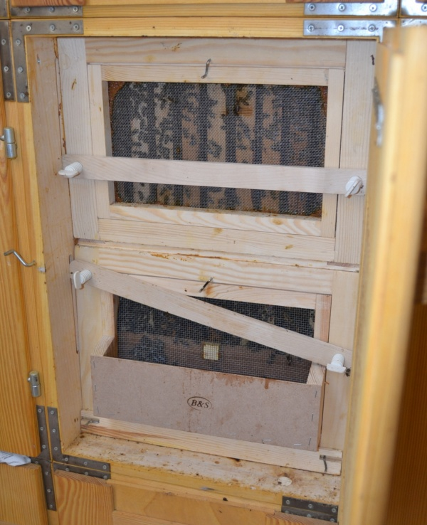 A l'intérieur du rucher, l'arrière d'une ruche AZ