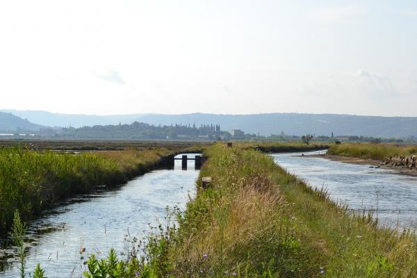 Canaux d'arrivée de l'eau de mer dans les bassins.