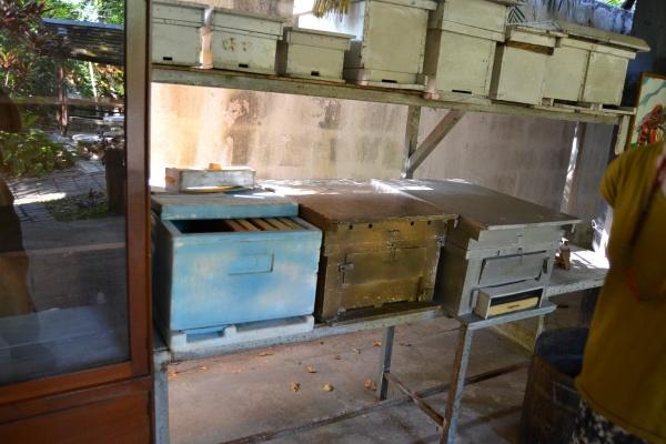 Le musée apicole