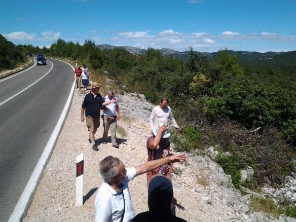 Arrêt sur la route pour des explications sur la flore méditerranéenne