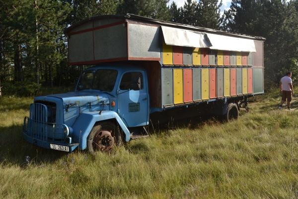 Camion rucher, mais équipé de ruches Langstroth.