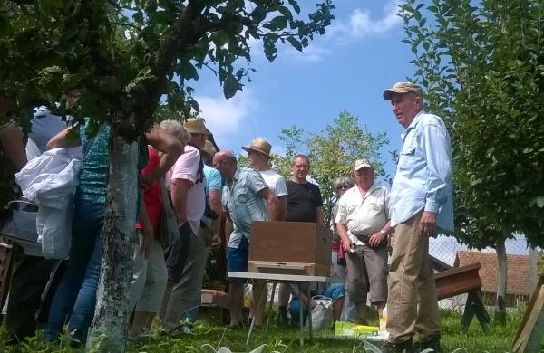 Explications sur l'apiculture bio