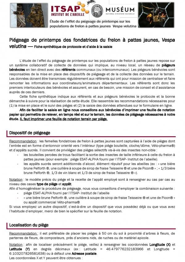 Frelon asiatique-Protocole de piégeage-page-001