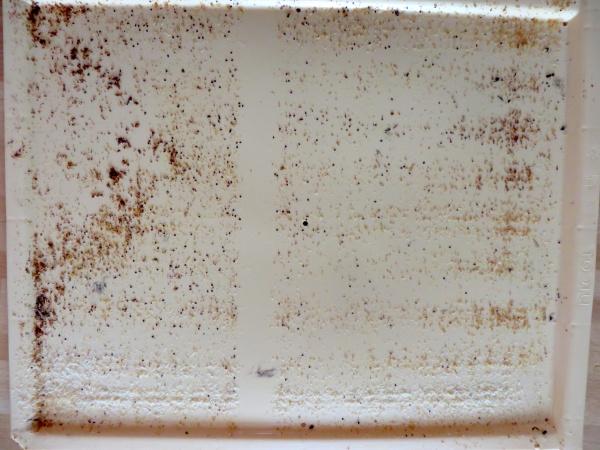 Contrôle du tiroir graissé mis dans la ruche précédente.